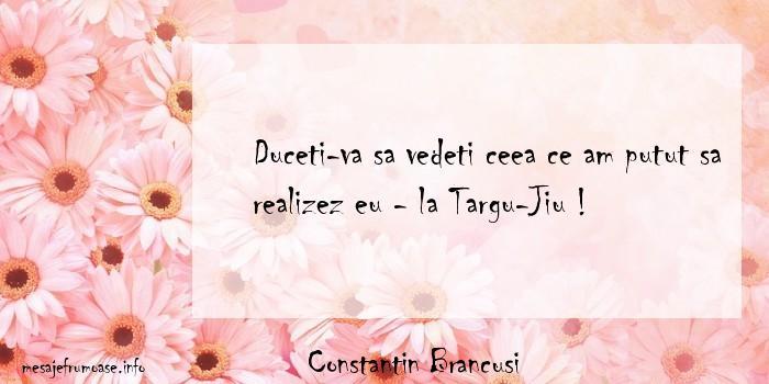 Constantin Brancusi - Duceti-va sa vedeti ceea ce am putut sa realizez eu - la Targu-Jiu !