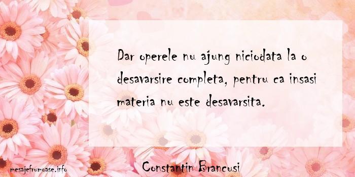 Constantin Brancusi - Dar operele nu ajung niciodata la o desavarsire completa, pentru ca insasi materia nu este desavarsita.