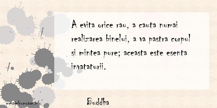 Buddha - A evita orice rau, a cauta numai realizarea binelui, a va pastra corpul si mintea pure; aceasta este esenta invataturii.