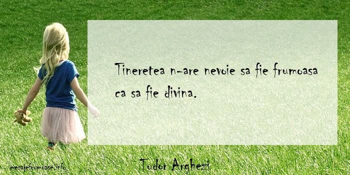 Tudor Arghezi - Tineretea n-are nevoie sa fie frumoasa ca sa fie divina.