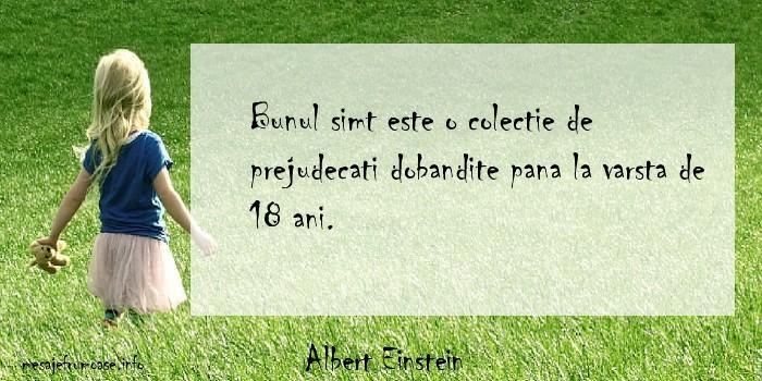 Albert Einstein - Bunul simt este o colectie de prejudecati dobandite pana la varsta de 18 ani.