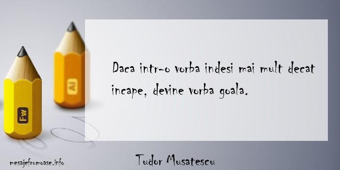 Tudor Musatescu - Daca intr-o vorba indesi mai mult decat incape, devine vorba goala.