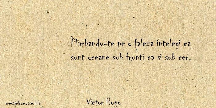 Victor Hugo - Plimbandu-te pe o faleza intelegi ca sunt oceane sub frunti ca si sub cer.