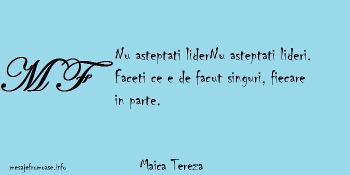 Maica Tereza - Nu asteptati liderNu asteptati lideri. Faceti ce e de facut singuri, fiecare in parte.
