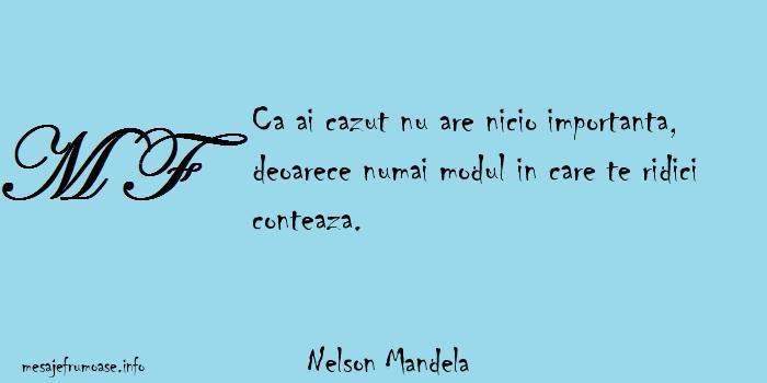 Nelson Mandela - Ca ai cazut nu are nicio importanta, deoarece numai modul in care te ridici conteaza.