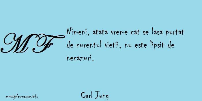Carl Jung - Nimeni, atata vreme cat se lasa purtat de curentul vietii, nu este lipsit de necazuri.