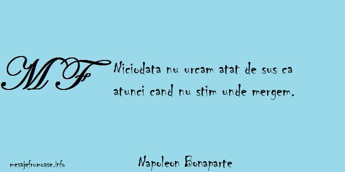 Napoleon Bonaparte - Niciodata nu urcam atat de sus ca atunci cand nu stim unde mergem.
