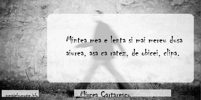 Mircea Cartarescu - Mintea mea e lenta si mai mereu dusa aiurea, asa ca ratez, de obicei, clipa.