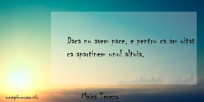Maica Tereza - Daca nu avem pace, e pentru ca am uitat ca apartinem unul altuia.