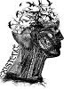Mesajefrumoase.info - Buddha - Mesaje Frumoase Existenta
