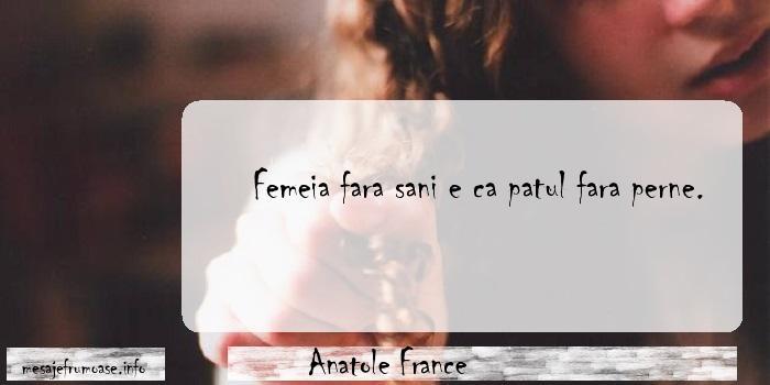 Anatole France - Femeia fara sani e ca patul fara perne.