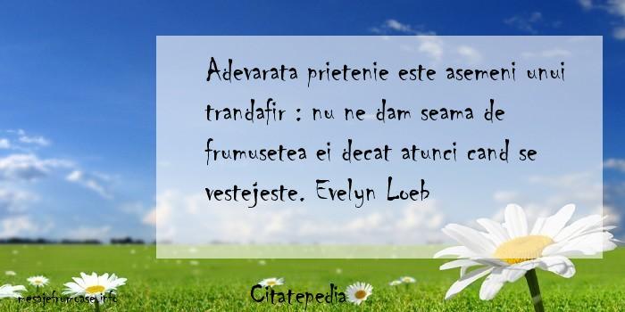 Citatepedia - Adevarata prietenie este asemeni unui trandafir : nu ne dam seama de frumusetea ei decat atunci cand se vestejeste. Evelyn Loeb