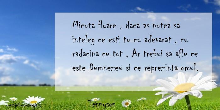 Tennyson - Micuta floare , daca as putea sa inteleg ce esti tu cu adevarat , cu radacina cu tot , Ar trebui sa aflu ce este Dumnezeu si ce reprezinta omul.