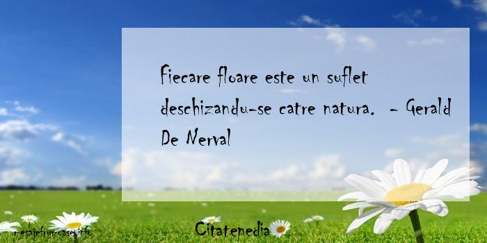 Citatepedia - Fiecare floare este un suflet deschizandu-se catre natura.  - Gerald De Nerval