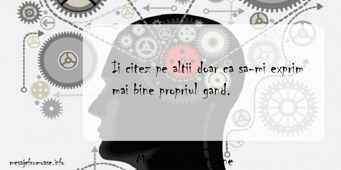 Michel de Montaigne - Ii citez pe altii doar ca sa-mi exprim mai bine propriul gand.