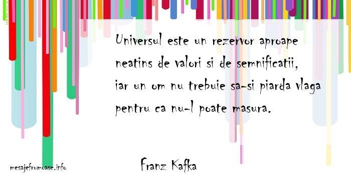 Franz Kafka - Universul este un rezervor aproape neatins de valori si de semnificatii, iar un om nu trebuie sa-si piarda vlaga pentru ca nu-l poate masura.