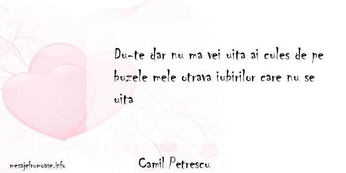 Camil Petrescu - Du-te dar nu ma vei uita ai cules de pe buzele mele otrava iubirilor care nu se uita