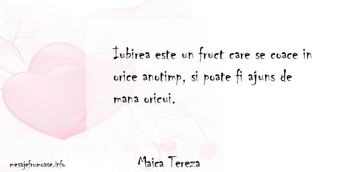 Maica Tereza - Iubirea este un fruct care se coace in orice anotimp, si poate fi ajuns de mana oricui.