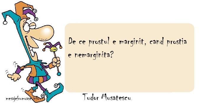 Tudor Musatescu - De ce prostul e marginit, cand prostia e nemarginita?