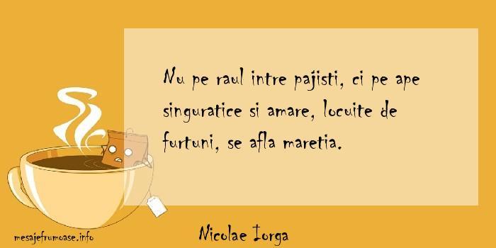 Nicolae Iorga - Nu pe raul intre pajisti, ci pe ape singuratice si amare, locuite de furtuni, se afla maretia.