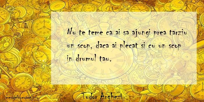 Tudor Arghezi - Nu te teme ca ai sa ajungi prea tarziu un scop, daca ai plecat si cu un scop in drumul tau.