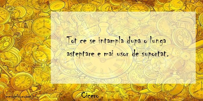 Cicero - Tot ce se intampla dupa o lunga asteptare e mai usor de suportat.