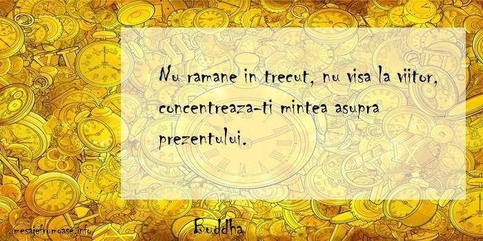 Buddha - Nu ramane in trecut, nu visa la viitor, concentreaza-ti mintea asupra prezentului.