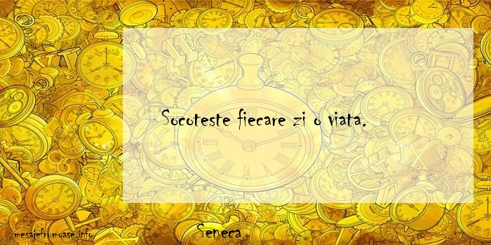 Seneca - Socoteste fiecare zi o viata.