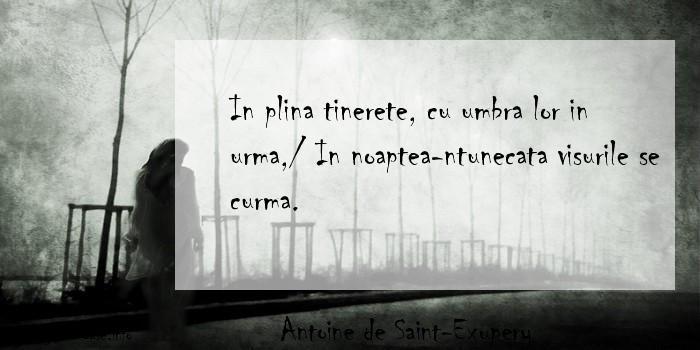 Antoine de Saint-Exupery - In plina tinerete, cu umbra lor in urma,/ In noaptea-ntunecata visurile se curma.