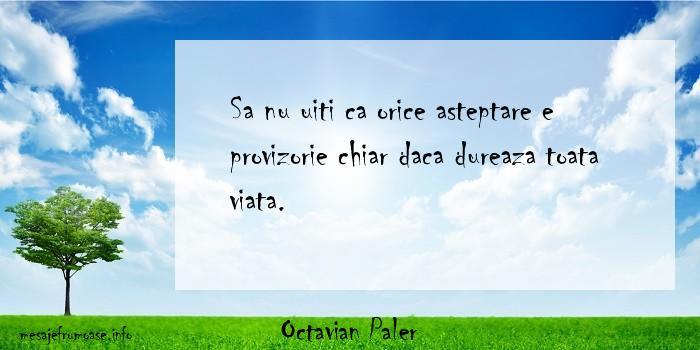 Octavian Paler - Sa nu uiti ca orice asteptare e provizorie chiar daca dureaza toata viata.