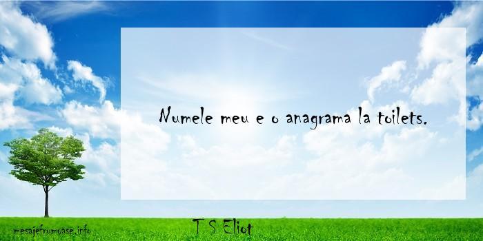 T S Eliot - Numele meu e o anagrama la toilets.