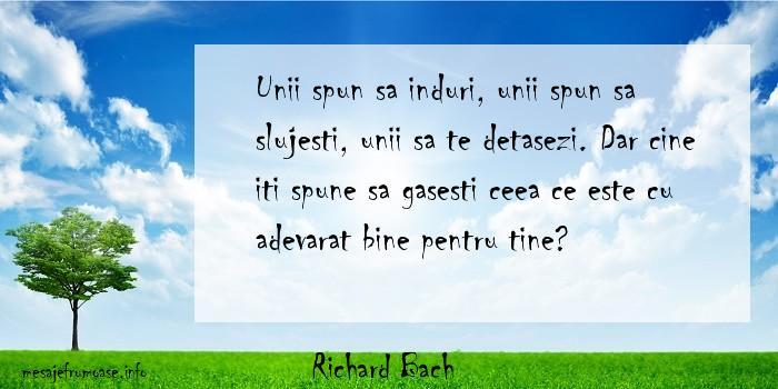 Richard Bach - Unii spun sa induri, unii spun sa slujesti, unii sa te detasezi. Dar cine iti spune sa gasesti ceea ce este cu adevarat bine pentru tine?