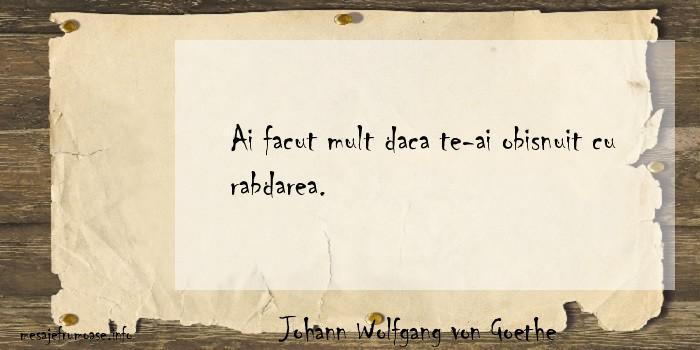 Johann Wolfgang von Goethe - Ai facut mult daca te-ai obisnuit cu rabdarea.