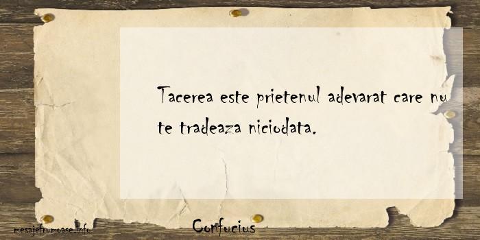 Confucius - Tacerea este prietenul adevarat care nu te tradeaza niciodata.